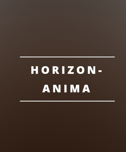 Exclusive Animated Template - horiz-anima